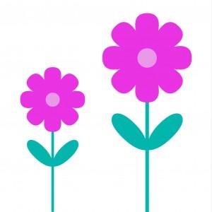 bloemen h2blossom